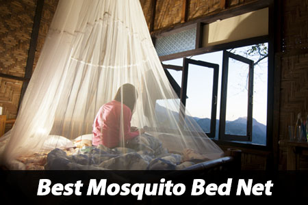 Best Anti Mosquito Bed Net Review