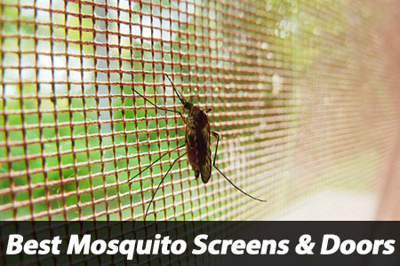 Best Mosquito Window Screen Door Stopper Review