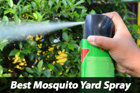 Best Mosquito Yard Spray Choice