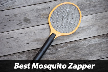 Best Mosquito Zapper Review Insect