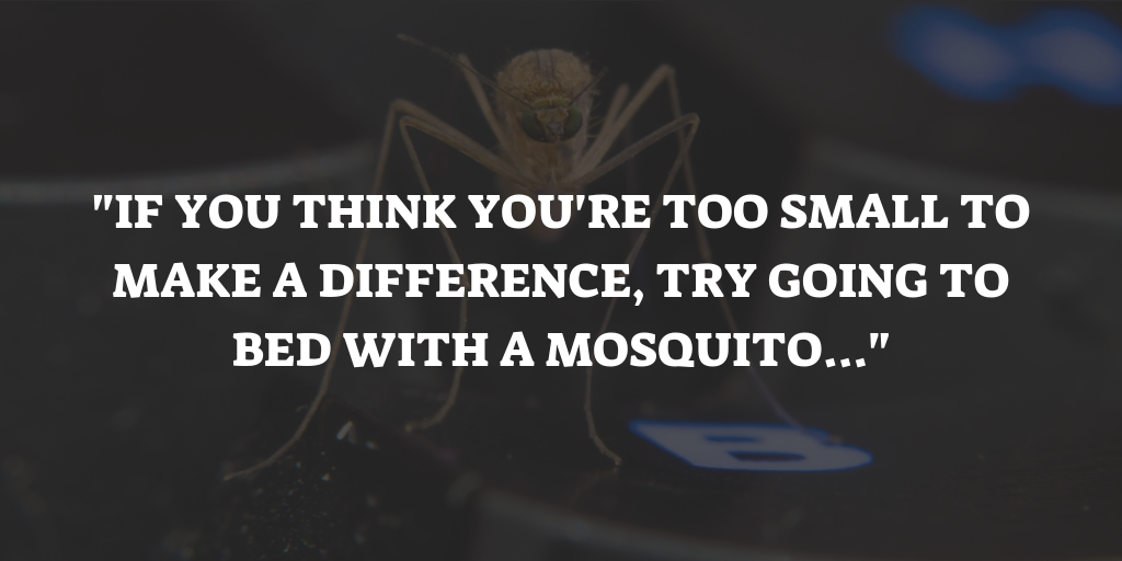 Inspirational Mosquito Quotes Sayings Hand Picked Proverbs
