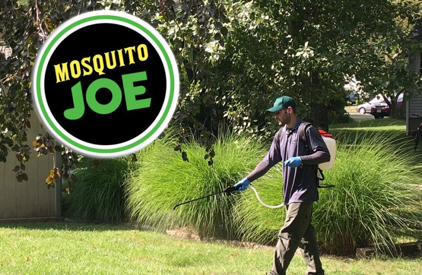 Mosquito Joe Locations Cost Reviews