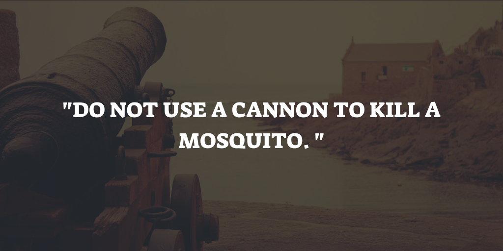 Mosquito Proverb