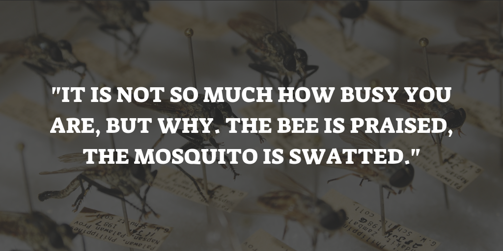 Mosquito Quotes Sayings