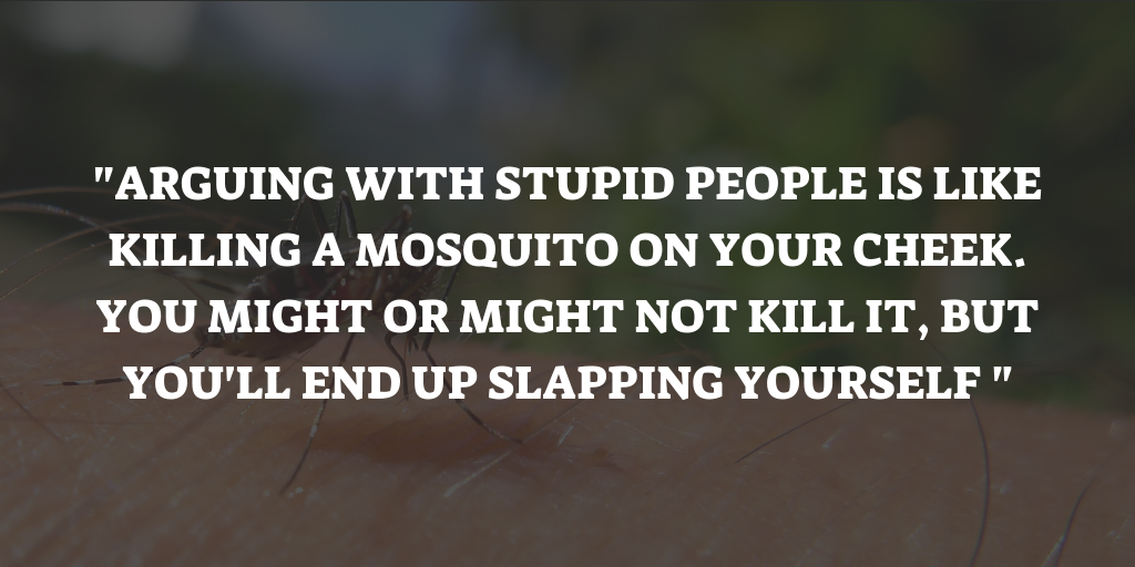 Mosquito Saying
